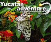 Yucatan Adventure:  Volunteer Mexico's Green Travel Guide to Chichen Itza, Yucatan